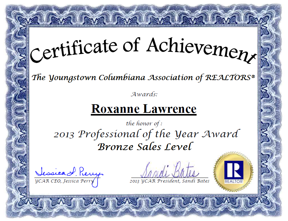 2013 Professional of the Year Award